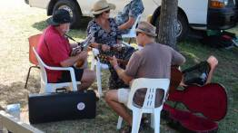 Jamming in the shade