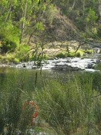 Yarrangobilly River