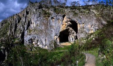 Yarrangobilly Cave